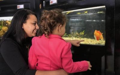 Renovado, aquário do Passeio Público reabre para...
