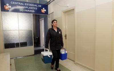 Paraná registra mais um recorde de doações de ór...