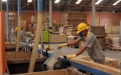 Taxa de desemprego do Paraná cai