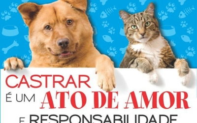 Unidades de castração de cães e gat...