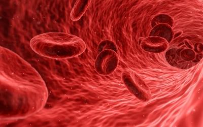 Exame de sangue para câncer encontr...