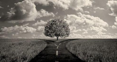 O seu caminho...